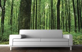 Modern Wall Murals with bamboo style