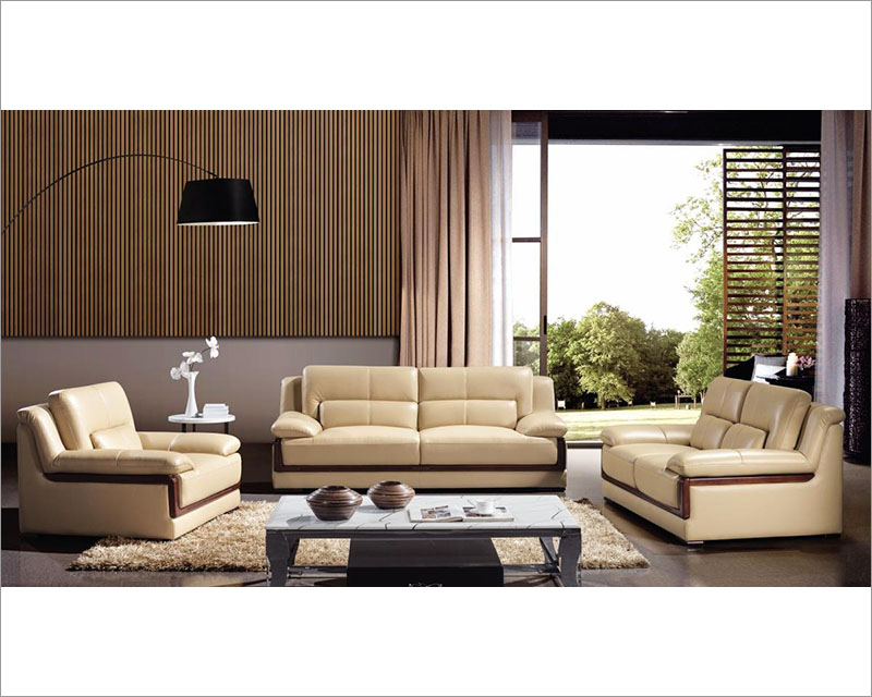 Exciting Contemporary Leather Sofa Sets
